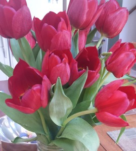 Easter flowers (2)